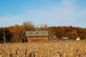 farm-gay-wedding-capitalregionweddings