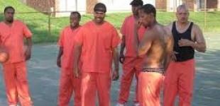 Black Gang Orders Members To Kill White Police