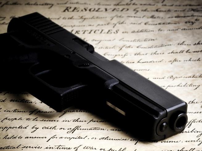 Legal Gun Owner Database