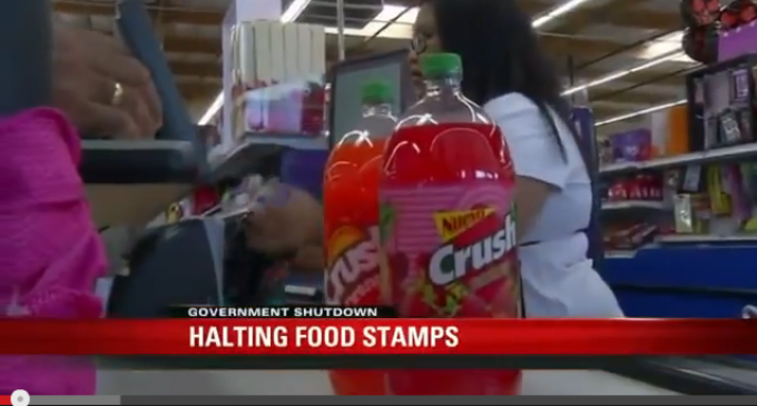 Obama Ends Food Stamp Programs In Nov: The American People Are Pawns
